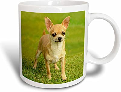 3dローズ犬チワワ–チワワ–マグカップ 11 oz ホワイト mug_414_5