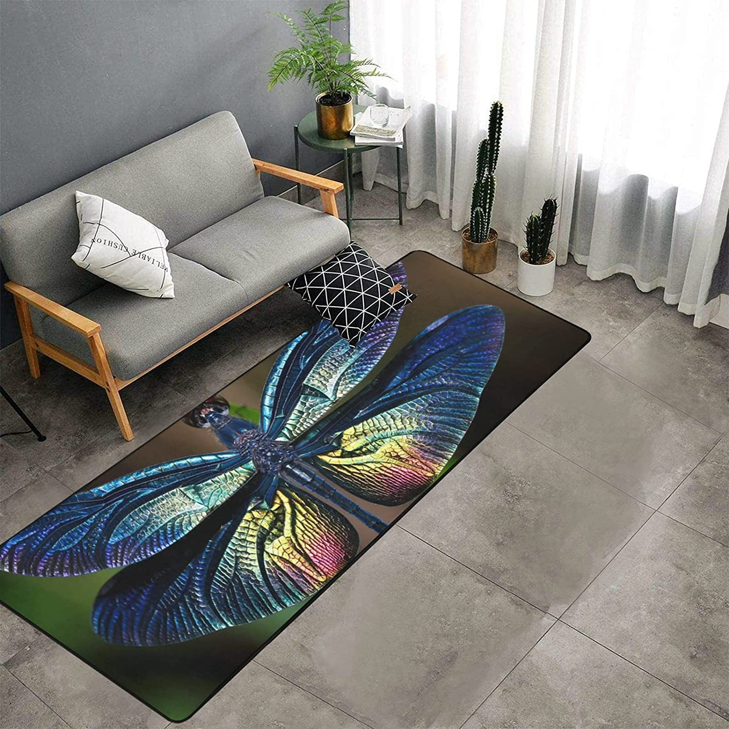 Cute New color and Petite Elf Dragonfly of Rugs Ma Bedroom wholesale Kitchen
