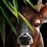 Life Of Deer