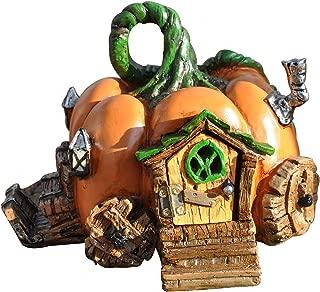 Georgetown Home and Garden Fiddlehead Fairy Pumpkin Carriage