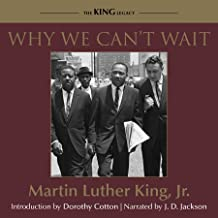 why we can t wait audiobook