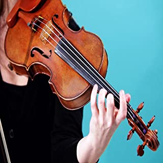 Beginner Violin Lessons Videos