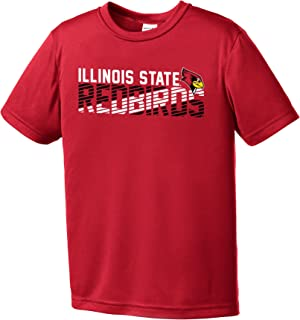 Best illinois state shirt Reviews