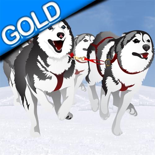 Hundeschlittenfahrten im Winter Rennen: der Hund kaltes Eis Schlitten im Nordpol - Gold Edition