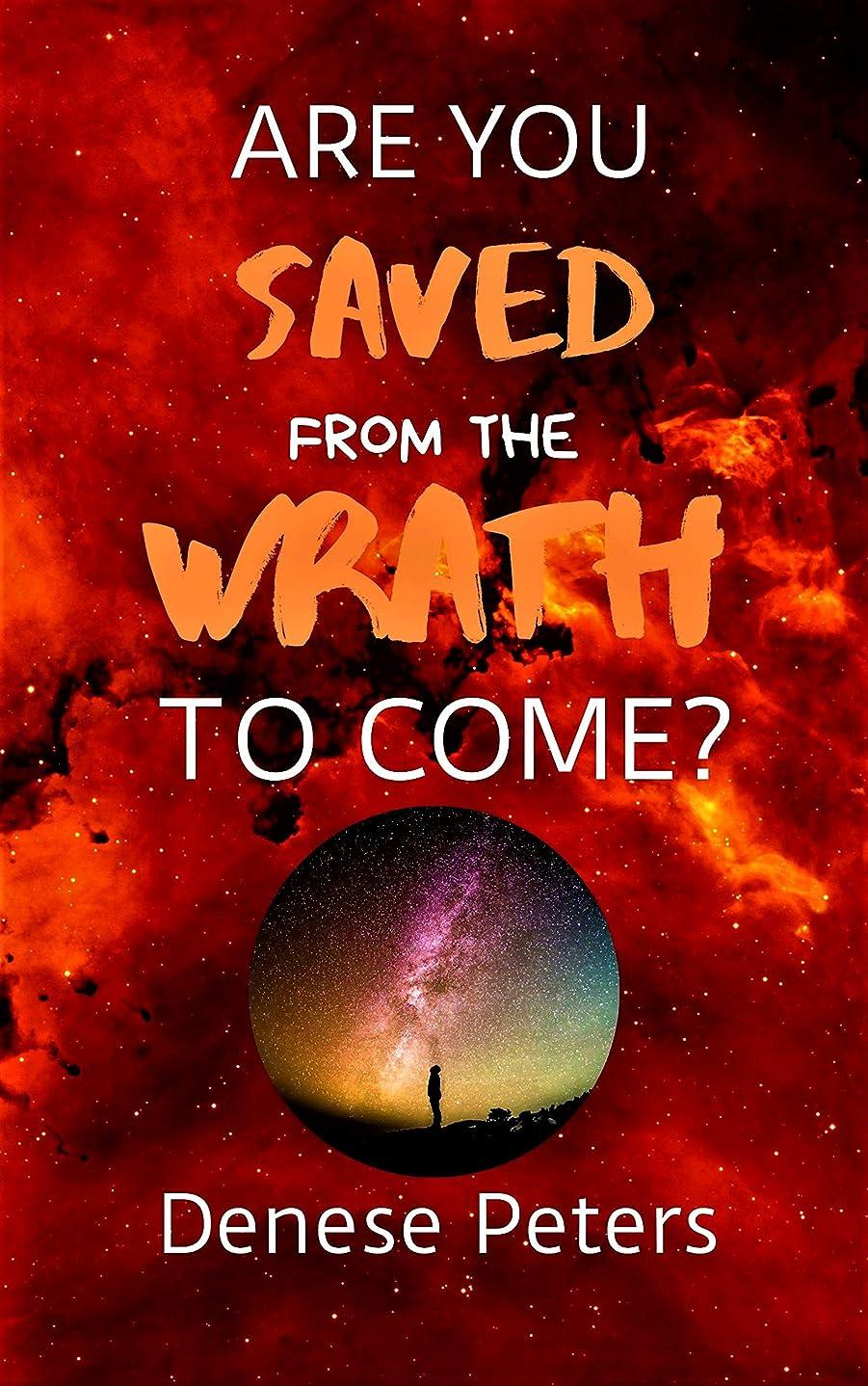 くぼみミサイル配送Are You Saved From The Wrath To Come? (English Edition)