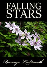 Falling Stars (Stories of Life, Stories of Love Book 3)