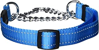 Rogz Obedience Dog Collar, Turquoise, Large