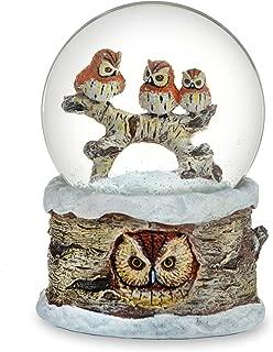 the barn owl box company