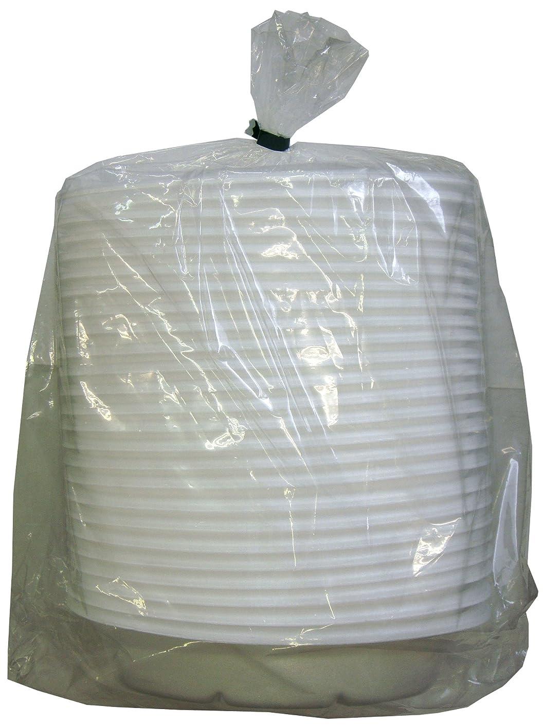 柱シンポジウムくま大和物産 使い捨て皿 発泡カレー皿 25P