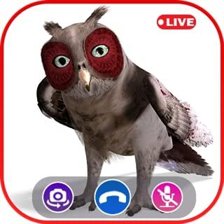 Call Video Owl Simulator - Prank Call Apps