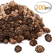Apipi 200pcs Thanksgiving Rustic Mini Brown Pine Cones in Bulk - Christmas Natural Pine Cones Ornaments for Home Decoratio...