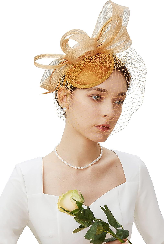 BABEYOND Veil Fascinator Hat for Women Tea Party Kentucky Derby Fascinator Hat Pillbox Hat Feather Fascinator