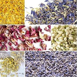Best blue lavender plants Reviews