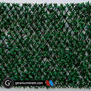 Geranium Street Artificial Magnolia Leaf Expandable Trellis (4ct) - Privacy Fence Screen for Outdoor, Garden - 39