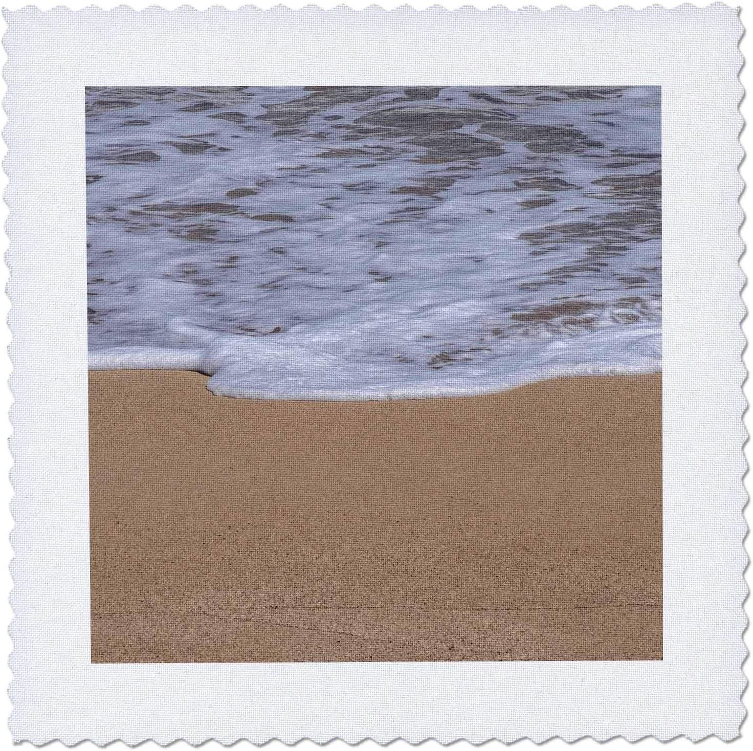 3dRose Danita Delimont - Surprise Excellent price Beaches Sea beac sandy foam on Golden