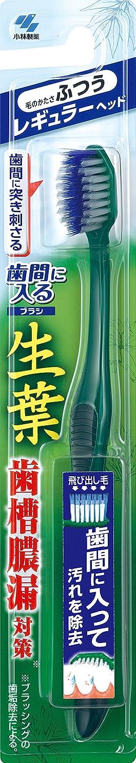 冷淡な休眠登録生葉(しょうよう)歯間に入るブラシ 歯ブラシ レギュラー ふつう