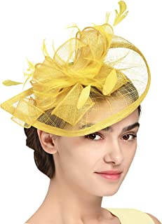 Fascinators Hat for Women Kentucky Derby Headband Wedding Mesh Feathers Tea Party Hair Clip