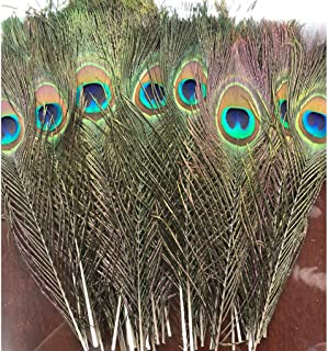 Best large peacock feathers Reviews