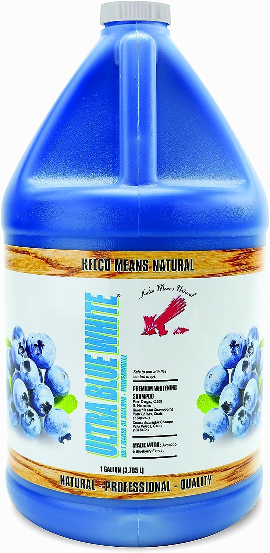 Kelco 50 1 Ultra bluee White Shampoo Gallon