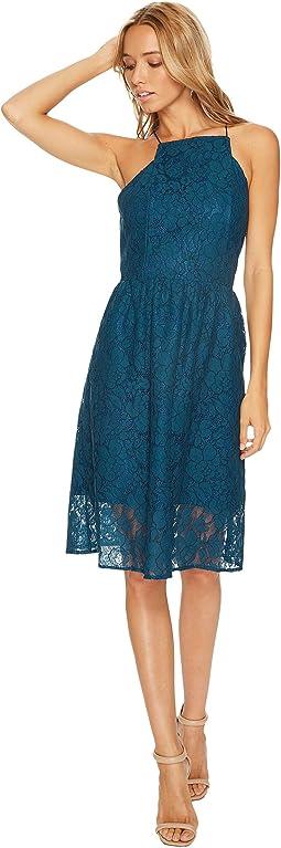kensie - Borderline Lace Dress KS9K9672