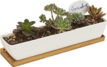 Best the sill planters Reviews