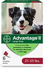 Advantage II Topical Flea Treatment for Large Dogs, 21 - 55 lbs