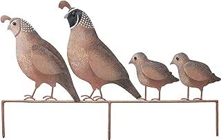 Best quail yard decor Reviews