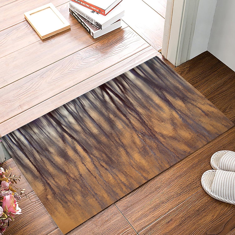 Findamy Non-slip Door Mat Entrance Rug Rectangle Absorbent Moisture Floor Carpet for Indoor Outdoor Trees Pattern Doormat 20x31.5 inch