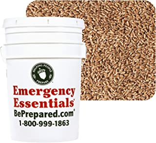 Provident Pantry Superpail Hard Red Wheat 45 Lbs.