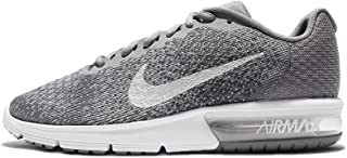 Nike Men's Air Max Sequent 2 Running Shoe (9.5 D(M) US, Cool Grey/Metallic Silver)
