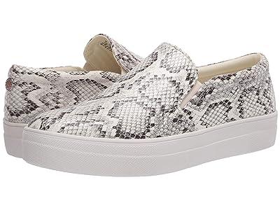 Steve Madden Gills Sneaker (Bone Snake) Women