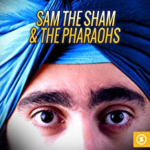 Best sam the sham and the pharaohs haunted house Reviews