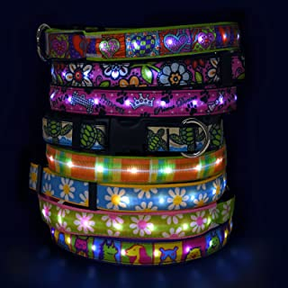 Hot Dog Safety Collar LED Light Up Collar with Rechargeable Battery, US Made Sizes