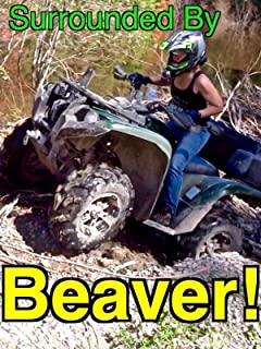 Surrounded By Beavers! - ATV Trail/Road Gone!.BEAVERS!