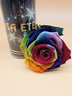 Rosa eterna Arco iris Multicolor EXTRA. GRATIS TU ENVÍO.
