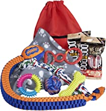 Dog Toy Gift Basket - Puppy Gift Basket - Birthday Dog Gift Basket - Puppy Toys for Small Medium Dogs - Dog Toy Package