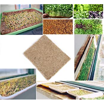 Amazon Com Coirplus Premium Coco Grow Mat Omri Listed 4 Ft X 4 Ft X 1 In 1 Piece 100 Natural Organic For Growing Microgreens Wheatgrass Etc Garden Outdoor