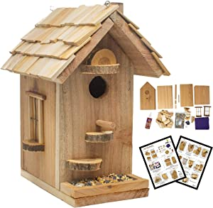 SparkJump Birdhouse Craft Kit | Premium Cedar Wood for Outside | Bird Feeder | Arts and Crafts | DIY Woodworking Building Project