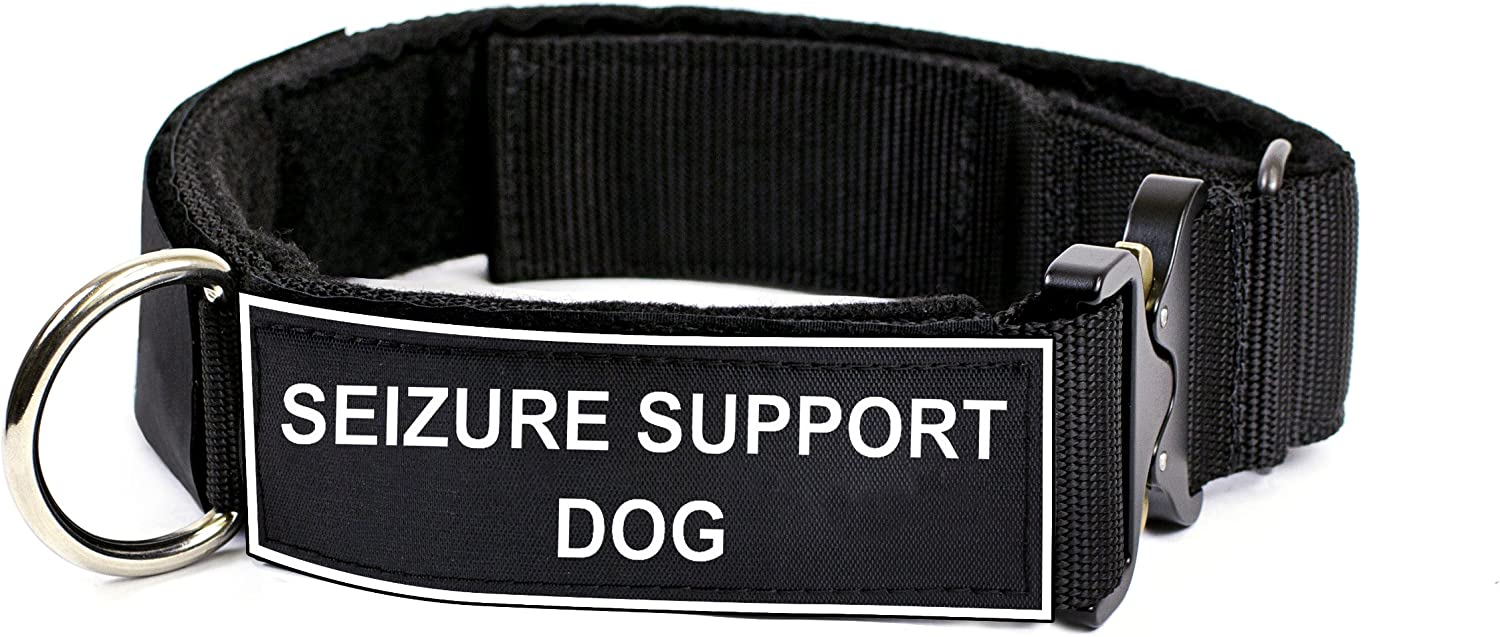 Dean & Tyler 18 to 21Inch Strong Nylon Cobra Patch Collar With Felt Padding, Seizure Support Dog Patches, Small, Black