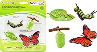 Best safari ltd life cycle of a monarch butterfly Reviews