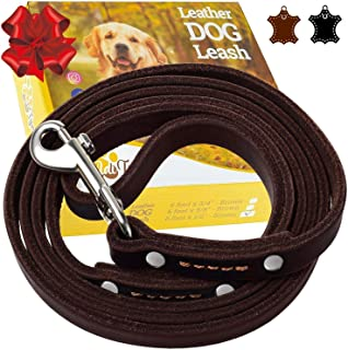 Best 1/2 inch leather dog leash Reviews