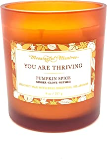 Pumpkin Spice Fall 8 oz Candle - Pumpkin Candle You are Thriving Ginger Clove Nutmeg Holiday Candle Real Essential Oil Aro...