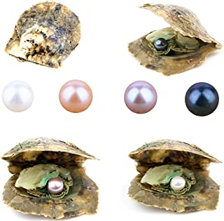 4PCS Saltwater Akoya Cultured Pearl Oyster with Round Pearl (6.5-7.5mm) Inside Jewelry Making or Birthday Gifts 4 Colors