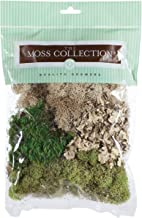 DARICE QG1390 Floral Moss Variety Pack Small, Multicolor