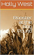 Rooster at the Dog Pound