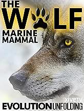 a list of marine mammals