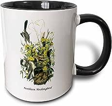 3dRose (mug_114035_4) Northern Mockingbird by John James Audubon - Two Tone Black Mug, 11oz