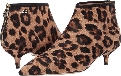 Leopard Printed Pony