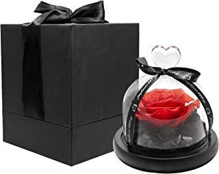 Premium Eternal Roses Preserved Rose Enchanted Rose Forever Rose Flowers for delivery Prime Eternal Rose Roses for Delivery Prime Beauty and The Beast Rose Flower Delivery (Red Rose Bud)