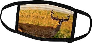 3dRose Whitetail Deer Buck in Velvet Antlers, Montana, USA - Face Covers (fc_231103_3)